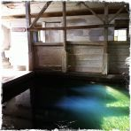 Had the pools all to ourselves. A little creepy at night but all lit-up during the day, when barn swallows swoop in and out.